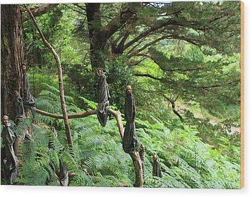 Magical Forest Wood Print by Aidan Moran