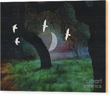Magical Forest Night Wood Print by Robert Ball