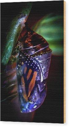 Magical Monarch Wood Print by Karen Wiles