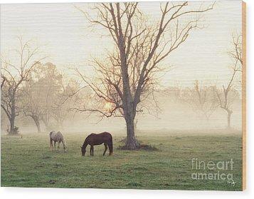 Magical Morning Wood Print by Scott Pellegrin