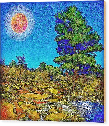 Wood Print featuring the digital art Sparkling Mountain Sunshine - Boulder County Colorado by Joel Bruce Wallach