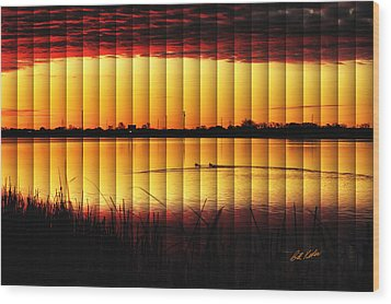 Magnificent Sunrise Swim Wood Print