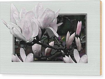 Magnolia Fantasy I Wood Print by Madeline Ellis