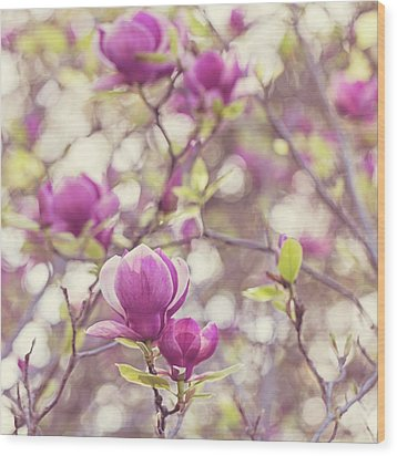 Wood Print featuring the photograph Magnolia by Melanie Alexandra Price