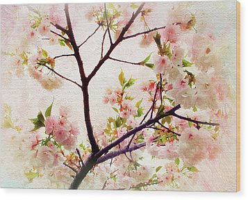 Wood Print featuring the photograph Asian Cherry Blossoms by Jessica Jenney