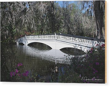 Magnolia Plantation Bridge Wood Print