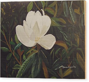 Magnolia Wood Print by Sharon  De Vore