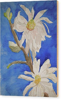 Magnolia Stellata Blue Skies Wood Print by Beverley Harper Tinsley