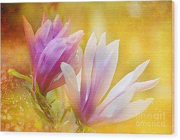 Magnolias Wood Print by Elaine Manley