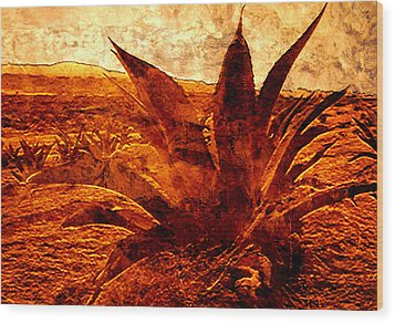 Maguey Agave Wood Print
