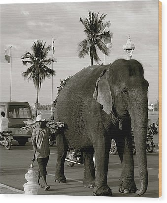 Mahout And Elephant Wood Print by Louise Fahy