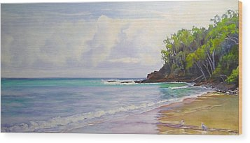 Main Beach Noosa Heads Queensland Australia Wood Print