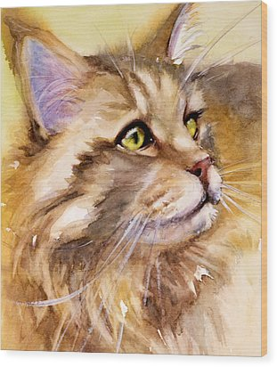 Main Coon Wood Print by Judith Levins