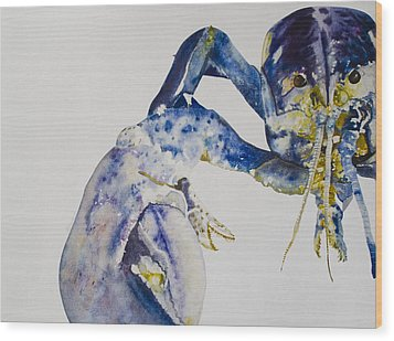 Maine Blue Lobster Wood Print by Kellie Chasse