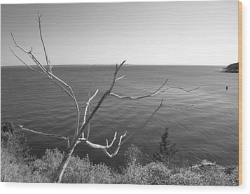 Wood Print featuring the photograph Maine Coastline by Corinne Rhode