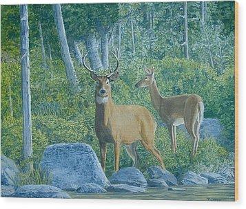 Maine Deer Wood Print by Lee Thomason