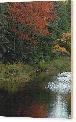 Maine Stream In The Fall Wood Print