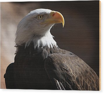 Majestic Eagle Wood Print by Marie Leslie