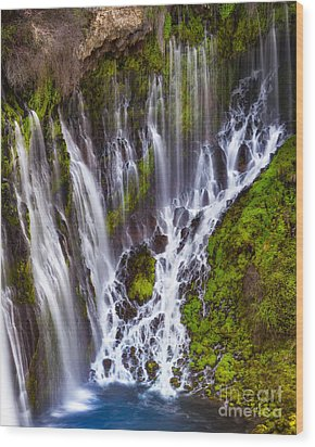 Majestic Falls Wood Print