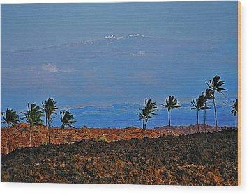 Majestic Mauna Kea Wood Print by Bette Phelan