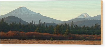 Majestic Mountains Wood Print by Terry Holliday Giltner