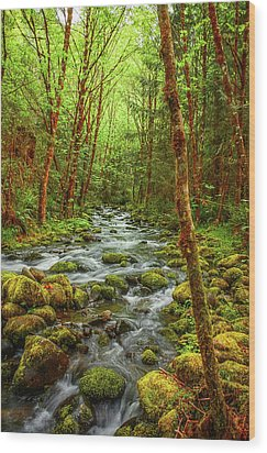 Wood Print featuring the photograph Majestic Stream by Tyra  OBryant