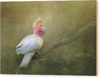 Wood Print featuring the photograph Major Mitchell's Cockatoo by Wallaroo Images