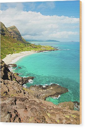 Makapu'u Beach Wood Print