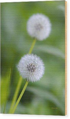 Make A Wish Dandelion Wood Print by Christina Rollo