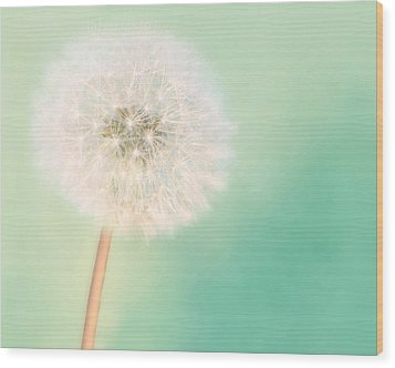 Make A Wish - Large Wood Print by Amy Tyler