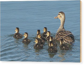 Make Way For Ducklings Wood Print