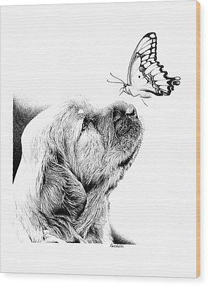 Making Friends Wood Print by Carole Raschella