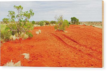 Making Tracks In The Dunes - Red Centre Australia Wood Print