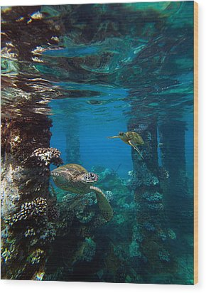 Mala Turtles Wood Print