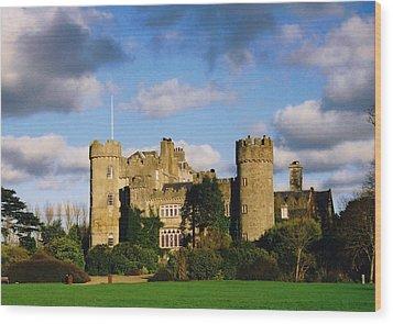 Malahide Castle Wood Print by Martina Fagan
