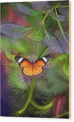 Malay Lacewing  What A Great Place Wood Print by James Steele
