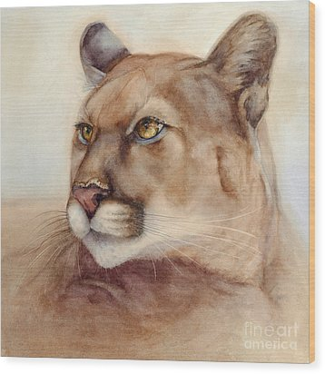 Male Cougar Wood Print