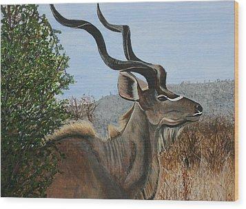Male Kudu Antelope Wood Print by Betty-Anne McDonald
