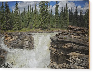 Wood Print featuring the photograph Maligne Canyon by Patricia Hofmeester