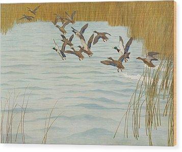 Mallards In Autumn Wood Print by Newell Convers Wyeth