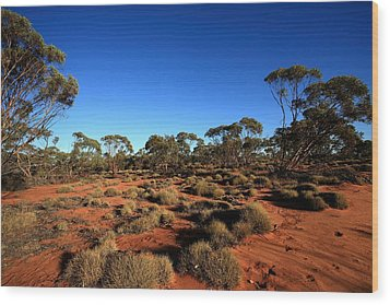 Mallee And Spinifex Wood Print