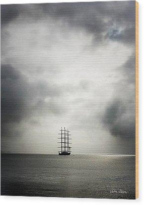 Maltese Falcon Wood Print by Sabine Stetson