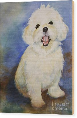 Wood Print featuring the painting Maltese Named Ben by Marilyn Jacobson