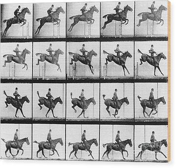 Man And Horse Jumping Wood Print by Eadweard Muybridge