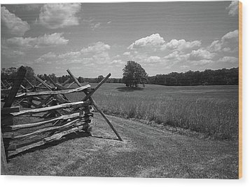 Wood Print featuring the photograph Manassas Battlefield Bw by Frank Romeo