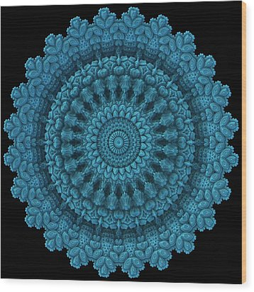 Wood Print featuring the digital art Mandala For The Masses by Lyle Hatch