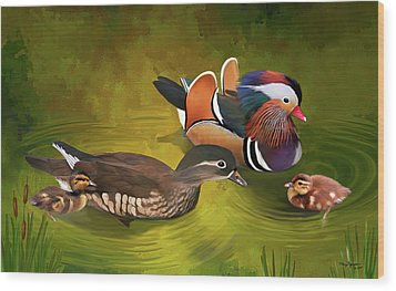 Mandarin Duck Family Wood Print