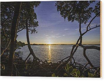 Mangrove Frame Wood Print