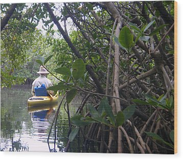 Mangrove Kayaker Wood Print by Steven Scott