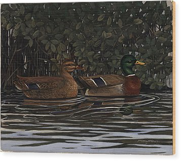 Mangrove Mallards Wood Print by Timothy Tron